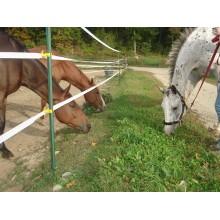 Πακέτο Ηλεκτρικής Περίφραξης 5στρεμ. για Άλογα